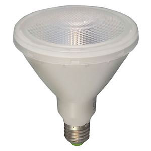 Picture of 05650  PAR38 LED