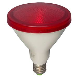 Picture of 05652  PAR38 LED