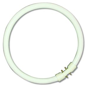 Picture of 05463   40w t5 Circular Tube