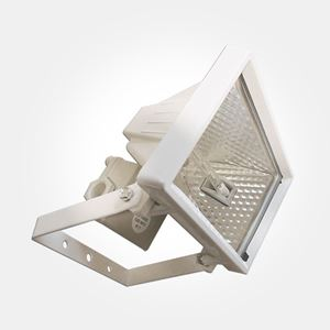 Picture of ETH120L 120w Enclosed Floodlight