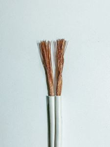 Picture of 42 Strand Speaker Cable