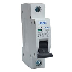 Picture of 16amp C TYPE  MCB for BG Fuse Board